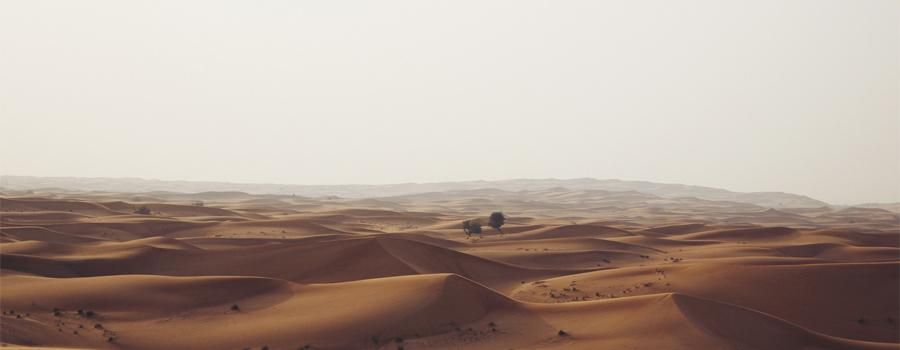 desert-slider